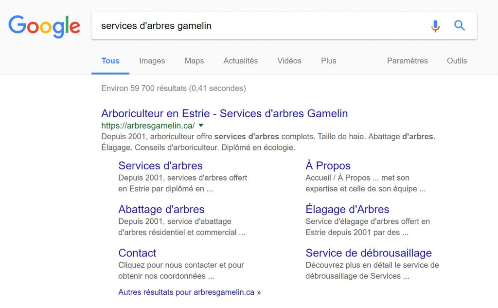 Capture de recherche Google de Services arbres Gamelin